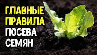 10 правил посева семян овощей и цветов на рассаду: грунт, глубина заделки семян, полив, тепличка...
