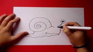 Como dibujar un caracol paso a paso | How to draw a snail