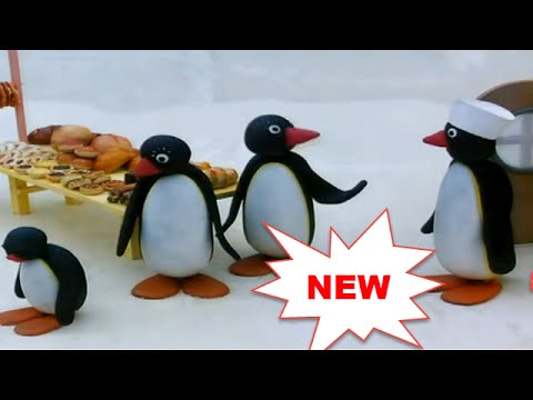 Pingu Cartoon Full Episodes