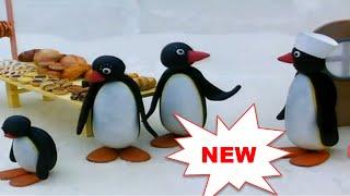 Pingu Dibujos Animados Episodios Completos
