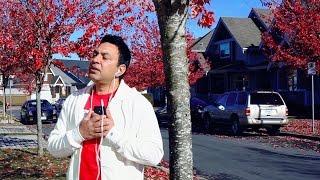 Dil Naheen Lagda | Manmohan Waris | Unity | New Song 2014