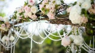 Свадьба в Могилеве, слайд-шоу из фото на свадьбу