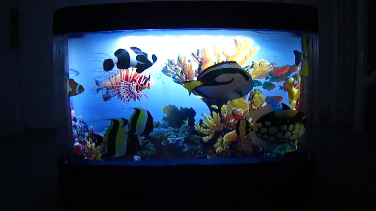 Captivating Discovery Waterless Aquarium