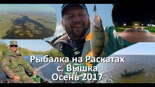 Рыбалка на Раскатах с. Вышка Осень 2017