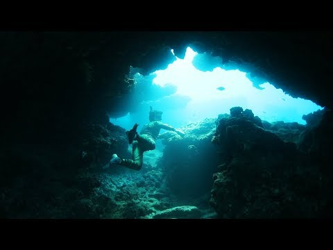 Found Underwater Caves in Hawaii with Sea Turtles! (Shark Sighted)
