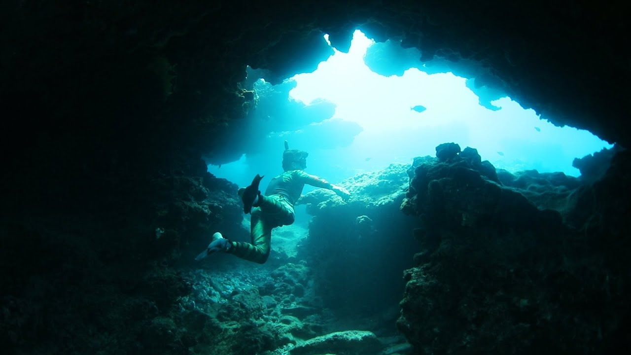 found-underwater-caves-in-hawaii-with-sea-turtles-shark-sighted