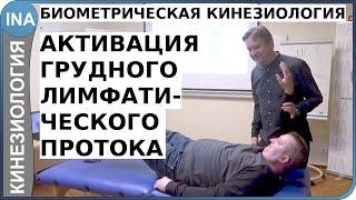 Биометрическая кинезиология. Активация грудного лимфатического протока. Германия