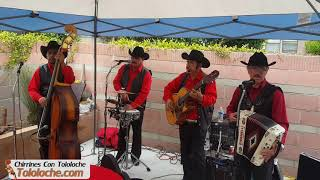 Sea por Dios - Chirrines Con Tololoche en Canoga Park CA 818-290-4645