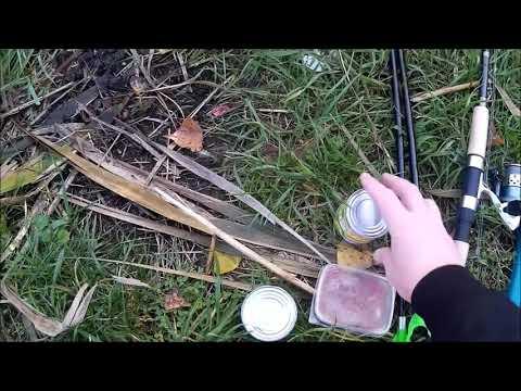 Рыбалка в Краснодаре. Как проехать и пройти на оз.Круглик. Какую рыбу можно поймать.