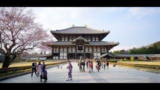 2017-04-03 日本day1 影片(關西KIX、大阪、奈良、阿倍野300)修正+字幕版
