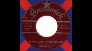 The Crickets - Love