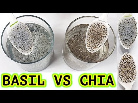 Chia Vs Basil Seeds For Weight Loss - Chia And Basil Seeds Difference? Chia Seeds For Weight Loss