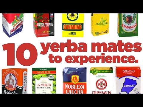 10 Brands of Yerba Mate You Should Know About