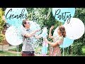 GENDER REVEAL PARTY | IT'S A...