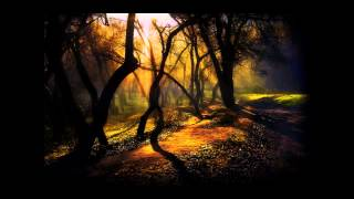 Tyler the Creator - Analog 2  (Frank Ocean & Syd)
