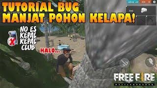 Gambar cover TUTORIAL BUG Manjat Pohon KELAPA Tanpa ES KEPAL (Gloo Wall) - Free Fire Indonesia