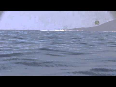 Refugee boat sinks off Turkey's Aegean coast