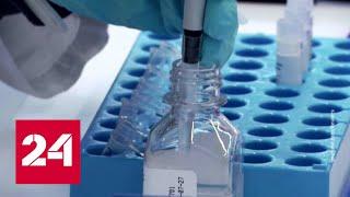 Почему британская AstraZeneca приостановила испытания вакцины от коронавируса - Россия 24