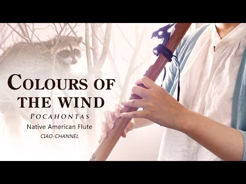 Colors Of The Wind/Pocahontas/Native American Flute Cover
