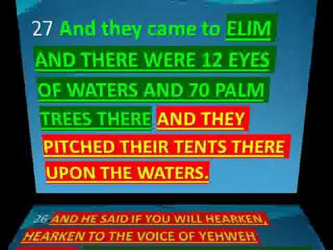 70 PALM TREES AND 12 WELLS (EYES) OF WATERS
