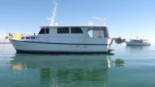 Liberation 52ft Steel Motor Cruiser for sale.