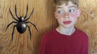 TOP 10 CREEPY CRAWLY CRITTERS