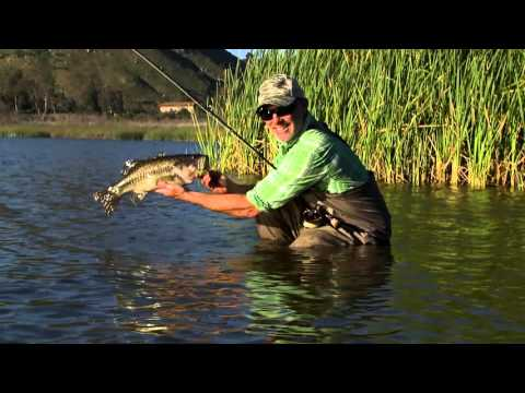 ORVIS - Conway Bowman Gives Tips On Fly Fishing For Bass