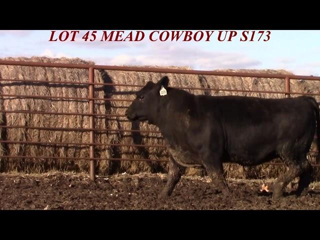 Mead Farms Lot 45