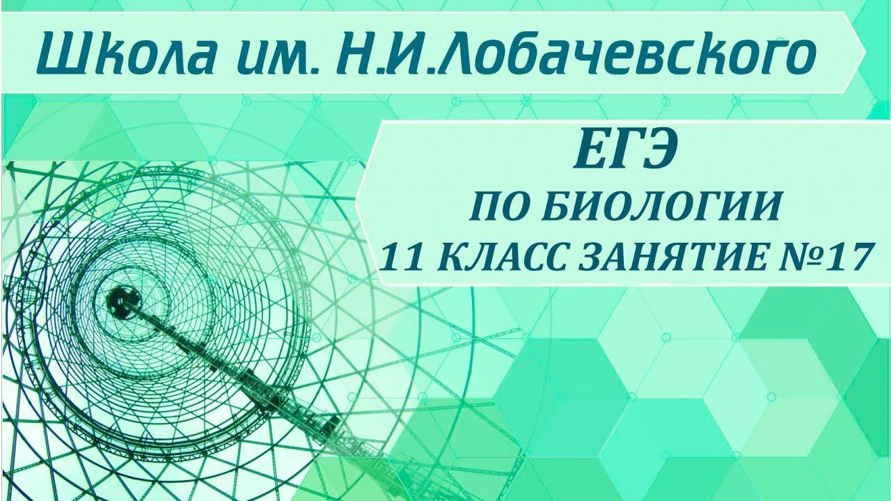 ЕГЭ по биологии 11 класс Занятие №17 Общая характеристика тканей растений. Классификация тканей
