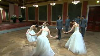 2011 New Years Day Vienna Concert: Strauss - Blue Danube Waltz (01Jan11)