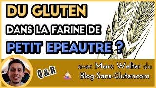 Du gluten dans la farine de petit épeautre - Marc Welter - [Blog-Sans-Gluten.com] - nutrition santé