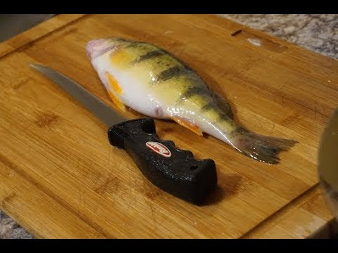 How to clean JUMO PERCH - Ice Fishing