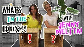 What᾽s In The Box | Jenny Melita
