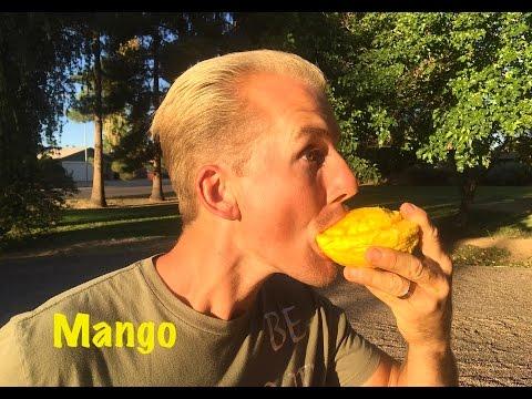 Epic EXOTIC MANGO Tasting with Shamus & Jake Mace - Phoenix, Arizona