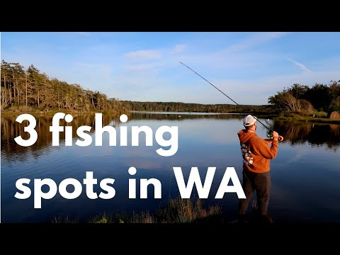 Trout Fishing In Washington