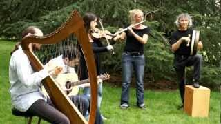 "Traditional Irish Music by ""The Ghillie"