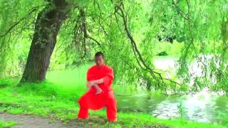 Qi Gong HD High Quality SHAOLIN QI GONG for your early morning exercise