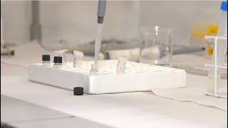 PEC da Inovação quer promover SC como pólo tecnológico