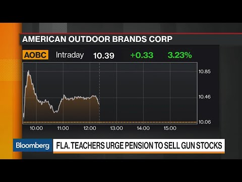 Florida Teachers Demand Their Pension Plan Dump Gun Stocks
