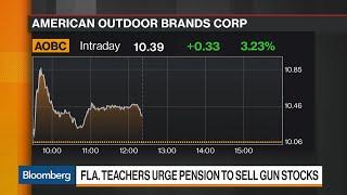 Florida Teachers Demand Their Pension Plan Dump Gun Stocks