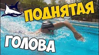 Как правильно плавать кролем? Плавание с поднятой головой. Какие ошибки исправить, чтоб плыть плавно