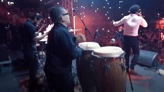 Si te vieras con mis ojos - Mauro Castillo (Live)