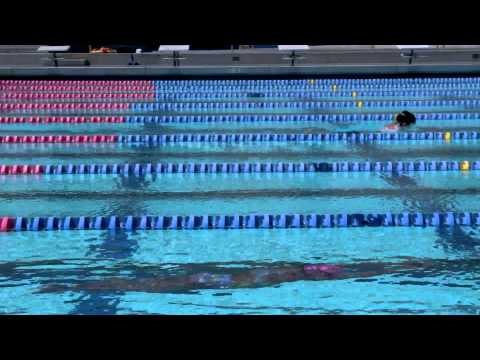 Swimming Training: Coaches