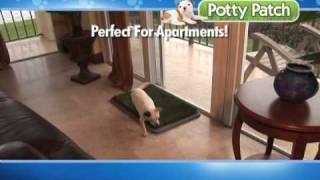 Potty Patch (2 min)