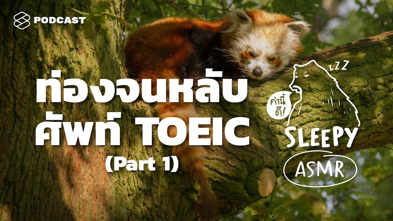ASMR | ท่องจนหลับ ศัพท์ TOEIC | Part 1 (Jungle Rain V.) | คำนี้ดี SLEEPY EP.24