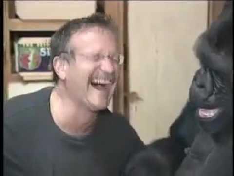 Robin Williams Meets Koko The Gorilla