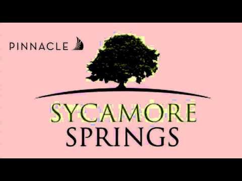 Life at Sycamore Springs