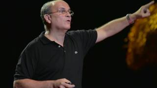 Biólogo | Manuel Raices | TEDxHabana