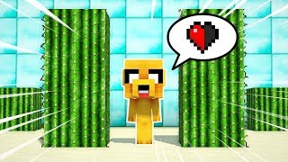 ¡2 NOOBS A MEDIO CORAZÓN VS LA TRAMPA DE CACTUS TROLL! 🌵💔 MINECRAFT FIND THE BUTTON #1