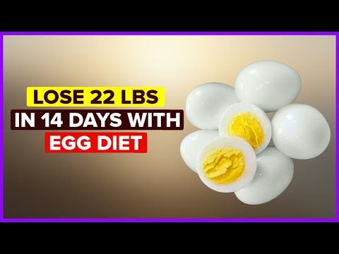 Egg Diet for Weight Loss Lose 20 lbs in 14 Days Boiled Egg Diet Plan for Weight Loss Egg Fast